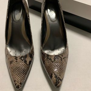 Leather snakeskin Alfani pointy toe heels